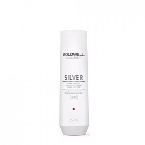 Goldwell Dualsenses Silver Shampoo 250ml -