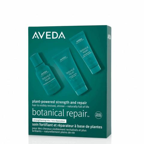 Aveda Botanical Repair Discovery Set -